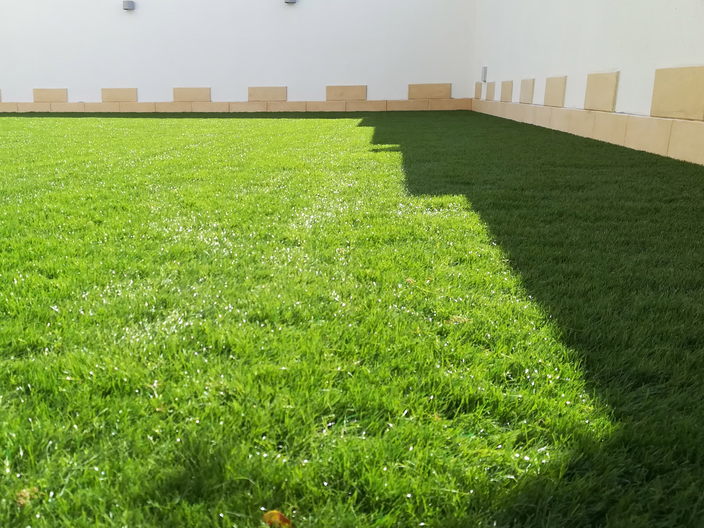 Realizzazioni erba sintetica decorativa EverGreen