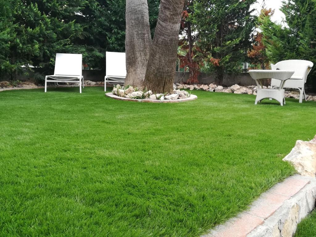 Giardini e bordi piscina giardini in erba sintetica di alta qualit - Erba artificiale per giardini ...